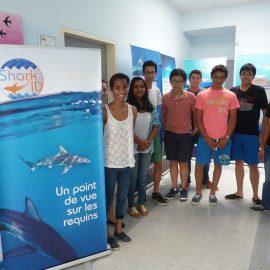 «Un Point de Vue sur les Requins» au Lycée des Mascareignes